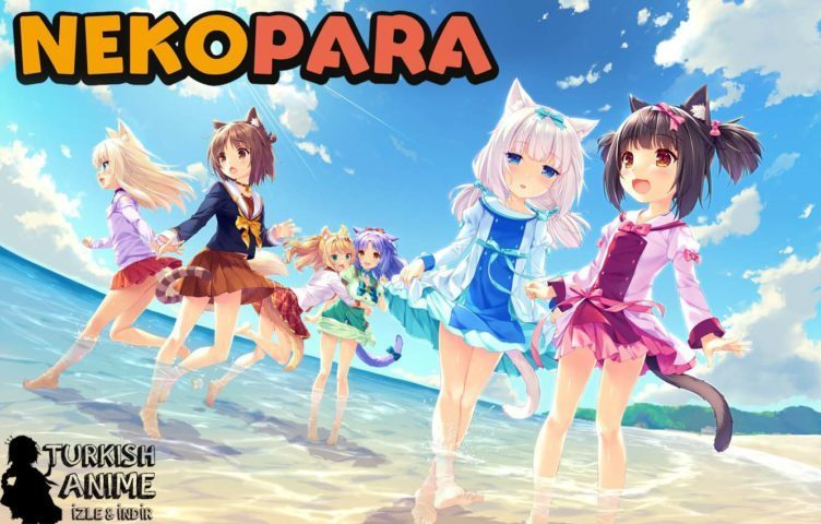 NekoPara Turkce izle wallpaper